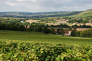 The Marne Valley