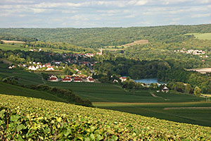 The Marne Valley in Gland